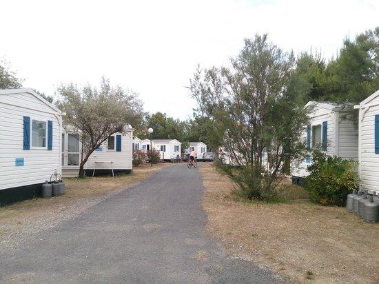 Camping Club Mar Estang: allée des mobile home