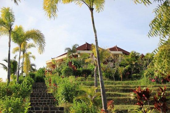 The Hamsa Resort: Территория отеля