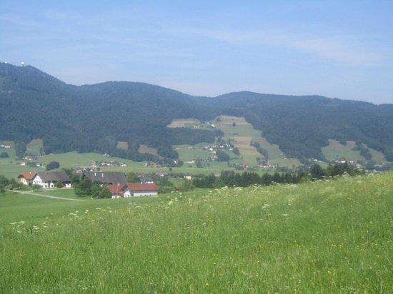 Pension Irlingerhof: Vistas