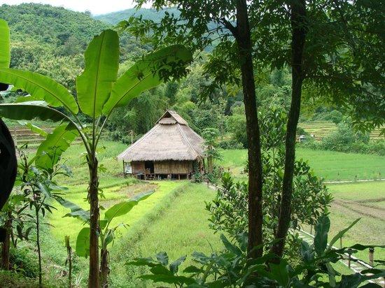 Kamu Lodge: restaurent