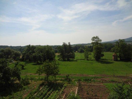 Le Clos Saint Léonard : view from room