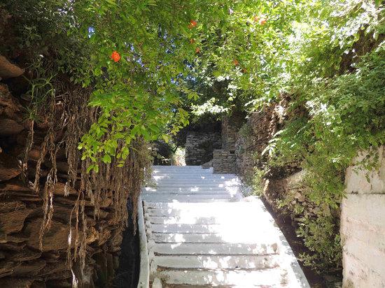 Village Path: so pretty