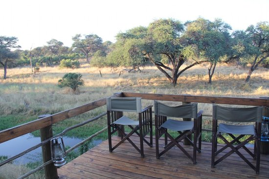 Mogotlho Safari Lodge: Watch Elephants, Buffalo, Lion, Wild Dogs all from here