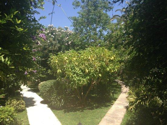Hotel Karia Princess: Les magnifiques jardins