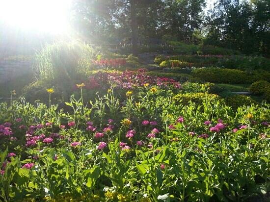 Sudbury, Canada: garden