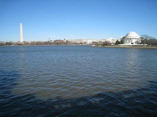 Capital Bikeshare: Across Tidal Basin of Washington Monument and Jefferson Memorial