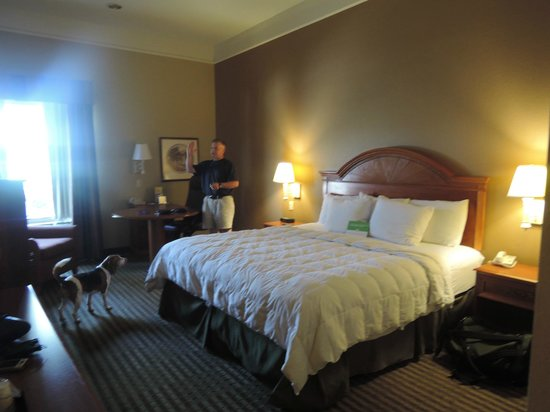 La Quinta Inn & Suites Beaumont West: Great bed