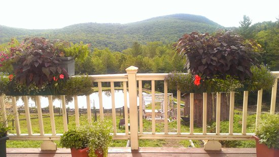 Cold Moon Farm Bed & Breakfast LLC: The view from the breakfast table