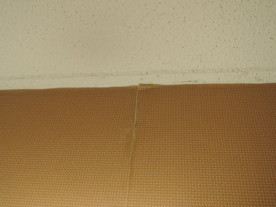 La Quinta Inn San Antonio I-35 N at Rittiman Rd: Peeling wallpaper