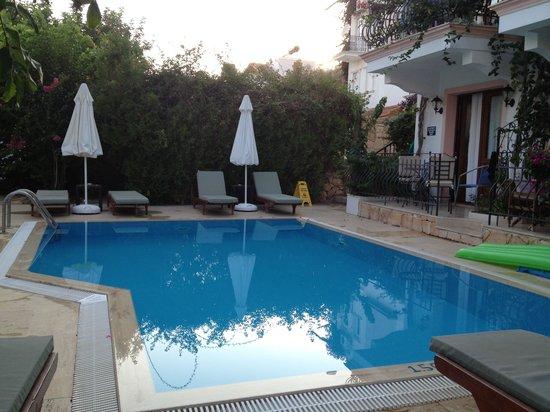 Korsan Apartments: The back pool