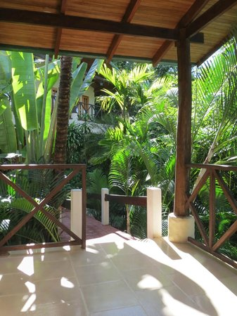 Falls Resort at Manuel Antonio : view from our room