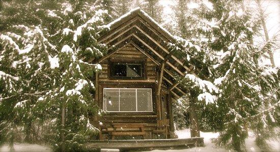 Cozy Cabins Nature Resort: Deer Cabin in Winter