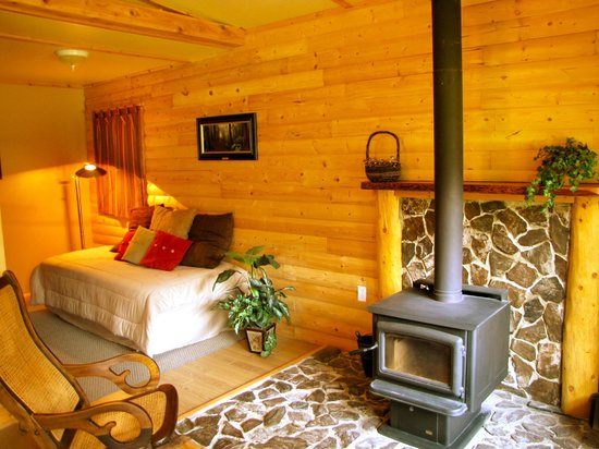 Cozy Cabins Nature Resort: Inside Fire Pit