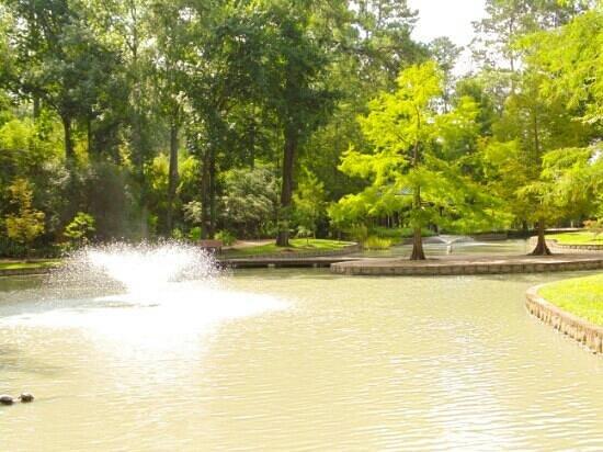 Mercer Arboretum U0026 Botanic Gardens