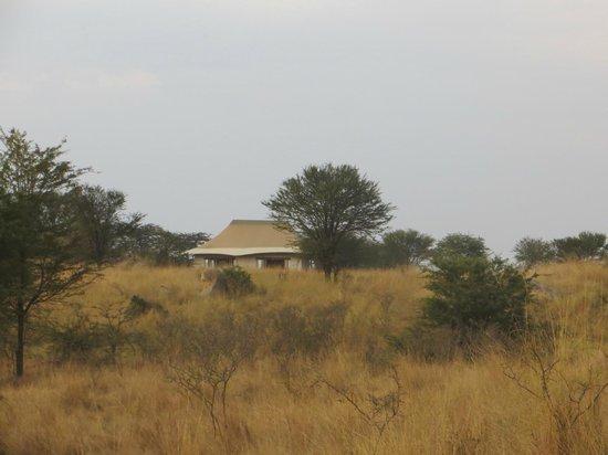 Sayari Camp, Asilia Africa : camp- exterior