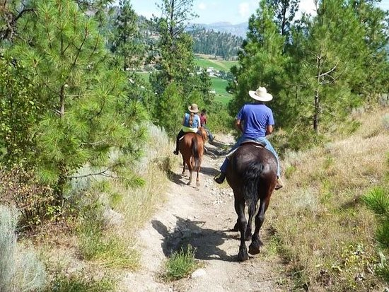 Kettle Valley Trail Rides and Carriage Company