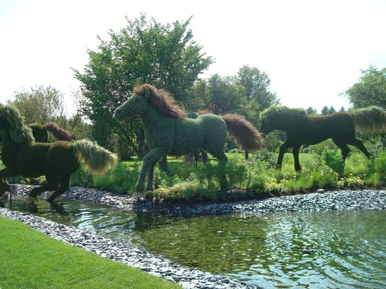 Delicieux Montreal Botanical Gardens: Horses