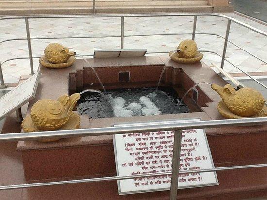 Akshardham Temple: fountain