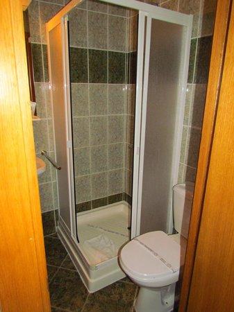 Hotel Delfinul: bathroom