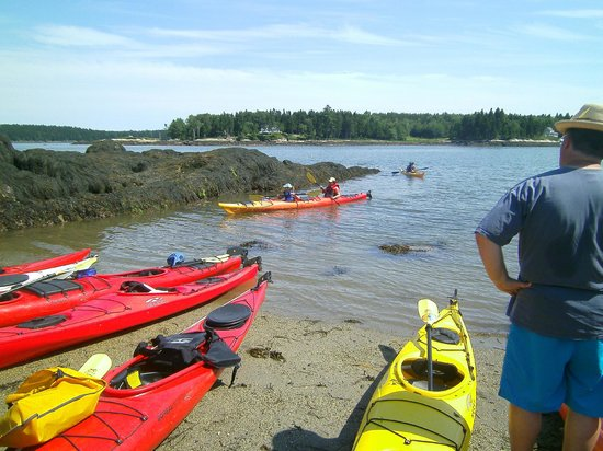 Harborfields : Beached on an island to picnic