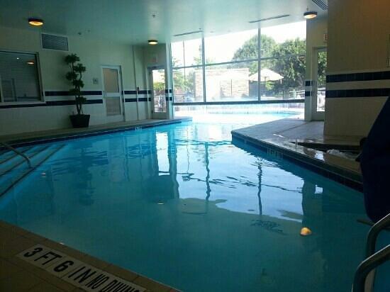 Hilton Garden Inn Gainesville : pool area