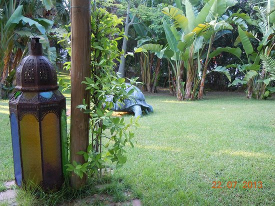 Park Hotel la Villa: Giardino esterno