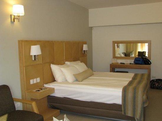 Ein Gedi Hotel: our room