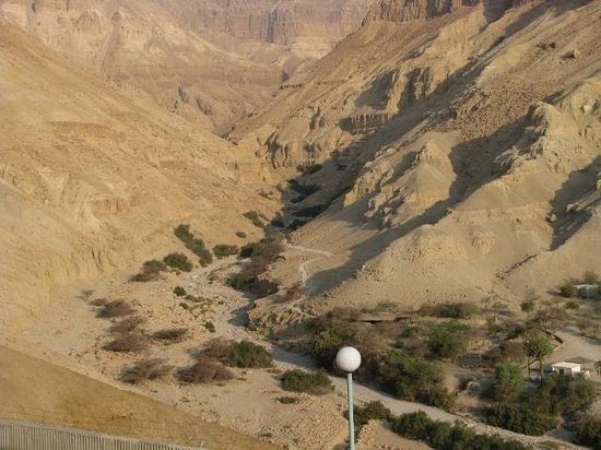 Ein Gedi Hotel: view from room