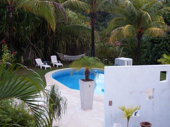 Hotel Horizontes de Montezuma: Pool