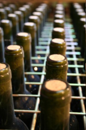 Hospederia del Vino: The Puelles Cellars
