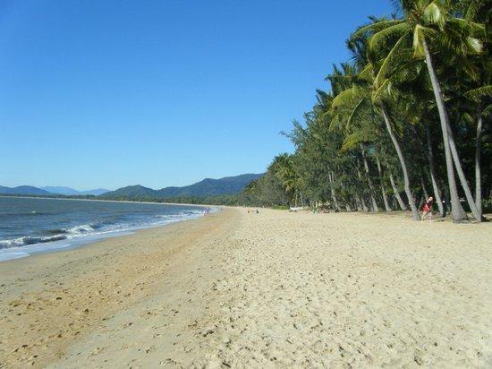 Palm Cove Beach : palm beach idyllic