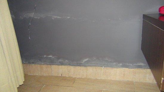 Tropicana Beach Resort & Spa: Eroding paint