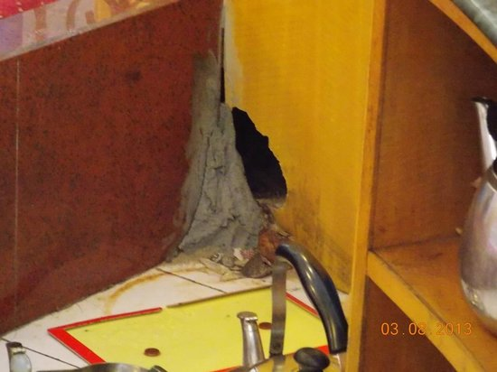 Gangcheng Holiday Hotel: Rats way huge size into centre of restaurant