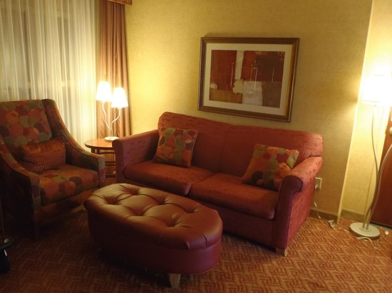 Embassy Suites by Hilton Charlotte - Concord / Golf  Resort & Spa: Living Room