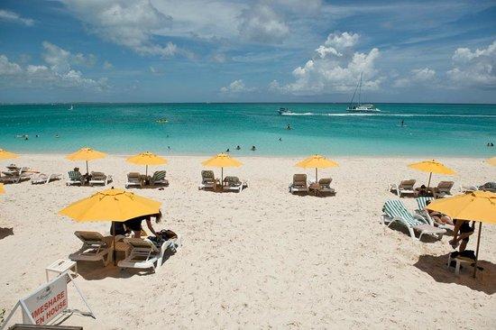 Alexandra Resort: Alexandra beach