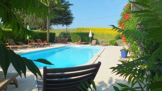 Peyrenegre Gites : Enjoy the heated salt water pool to 28 degrees.