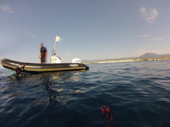 Diving Life : Sunny day - calm seas
