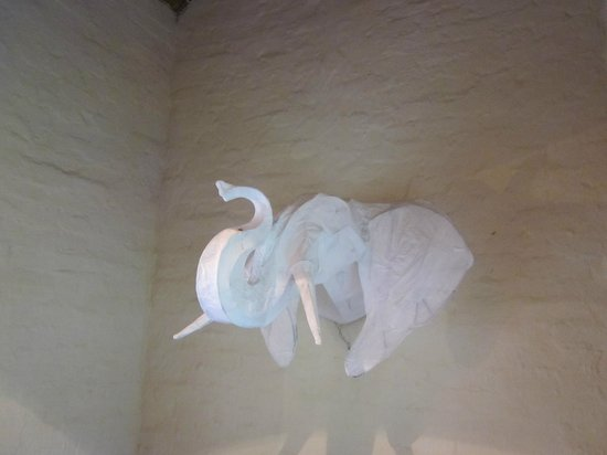 The Elephant House: Addo Elephant!