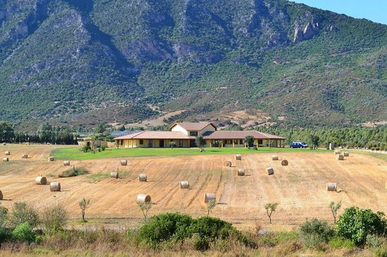 Agriturismo Saludi e Trigu: Vista dalla strada