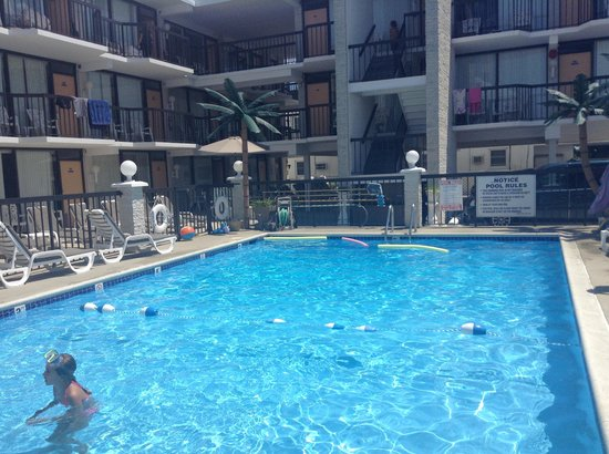 Horizon Motor Inn: The pool area