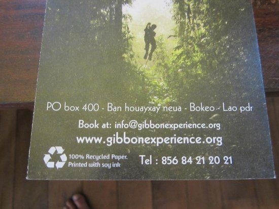 The Gibbon Experience: Beware!Don't go with them!