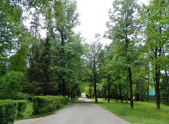 Museum of King Nikola: Royal Court's Gardens