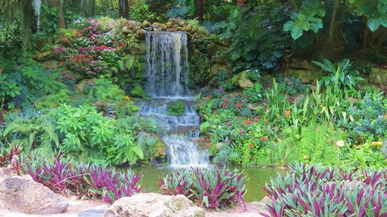 Winter Haven, FL: Waterfall inside Cypress Gardens