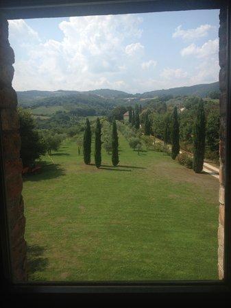 Tenuta di Canonica : view from room 8