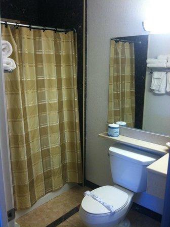 Santa Clarita Motel: Shower and full size tub