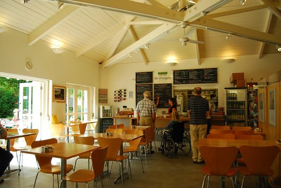 Penlee House Gallery & Museum: the orangery cafe