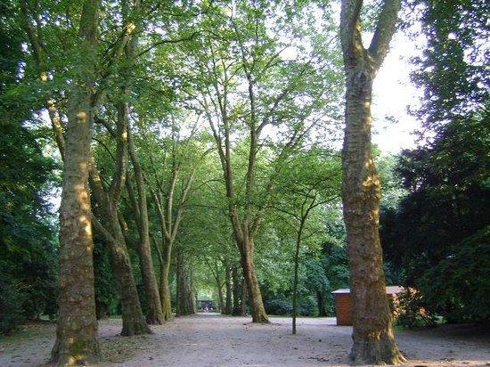 Stadtgarten Gelsenkirchen