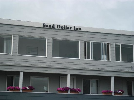 Sand Dollar Inn and Cottages: Suite Ocean View