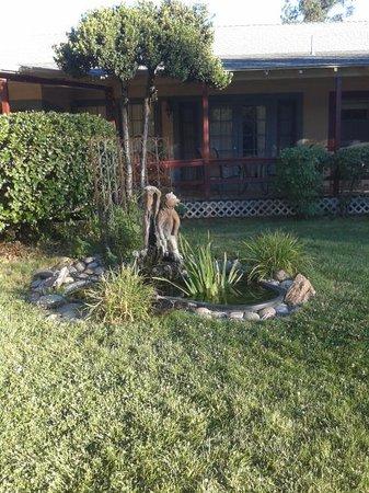 Sierra Sky Ranch: Detalle jardín