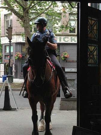 J & M Cafe: This policeman's horse was thirsty-wanted a beer!